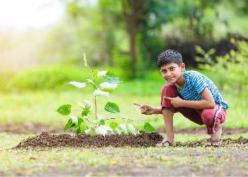 Boy pointing at tree