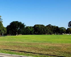 Zebra Park Sports Field Consultation Session