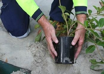 Council's Carbon Footprint