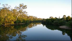 Regional Ecosystem Vegetation Mapping Project