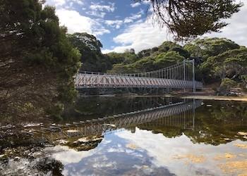 Antechamber Bay Bridge Completed