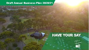 Draft Annual Business Plan