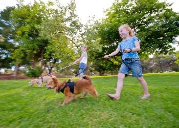 Fremont Park children walking dog